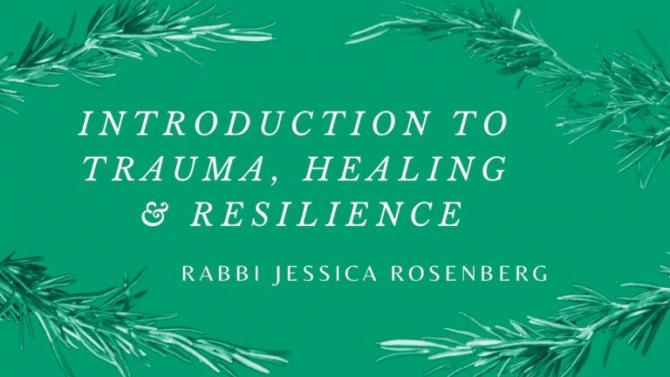 Green graphic with leaves borrowed from the cover of Trauma, Healing & Resilience for Rabbis, Jewish Educators and Organizers